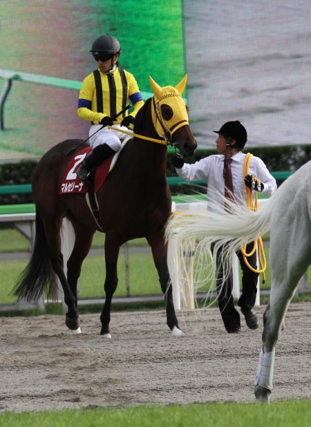 マルセリーナ府中牝馬S2