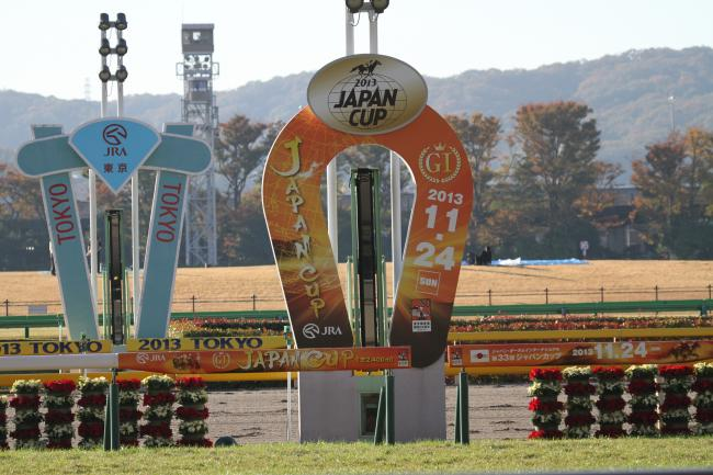 2013JC ゴール板
