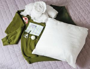 sweatshirt-pet-bed01_convert_20130902192718.jpg