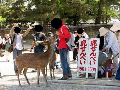 奈良町散歩8