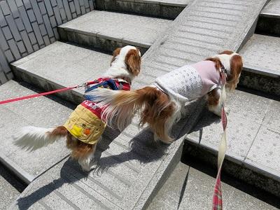 奈良町散歩9