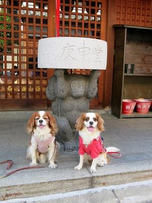奈良町散歩20