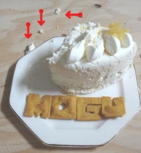 モグ・ケーキ③