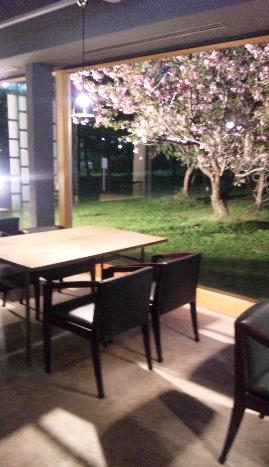 0531桜ディナー