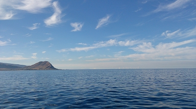 s-イルカの海
