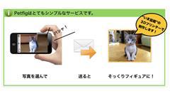 3dpet.jpg