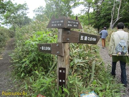 知床五湖③