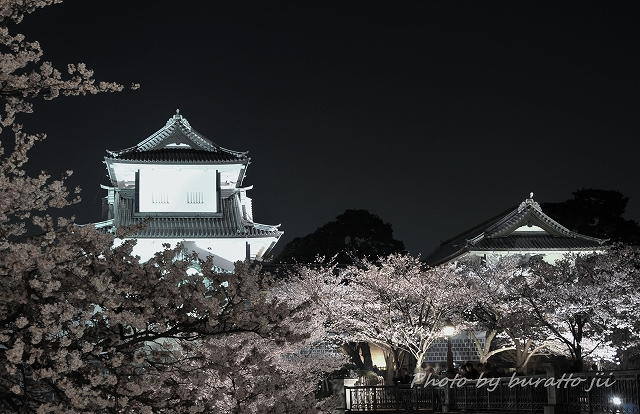 14.2013.04.04兼六園・金沢城 099