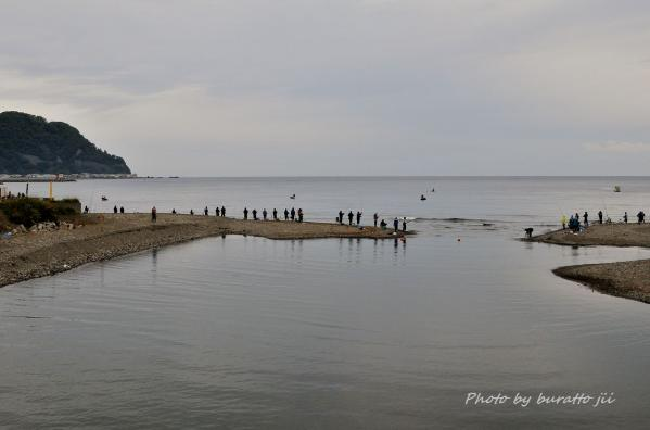 1HKD_古平町浜の秋鮭