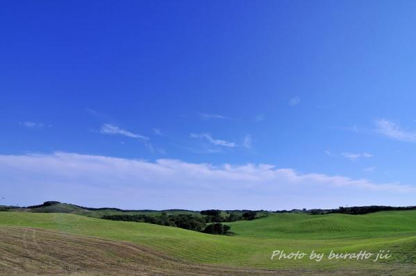 11HKD_広々とした牧草景色