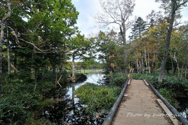 14HKD_1湖への木道