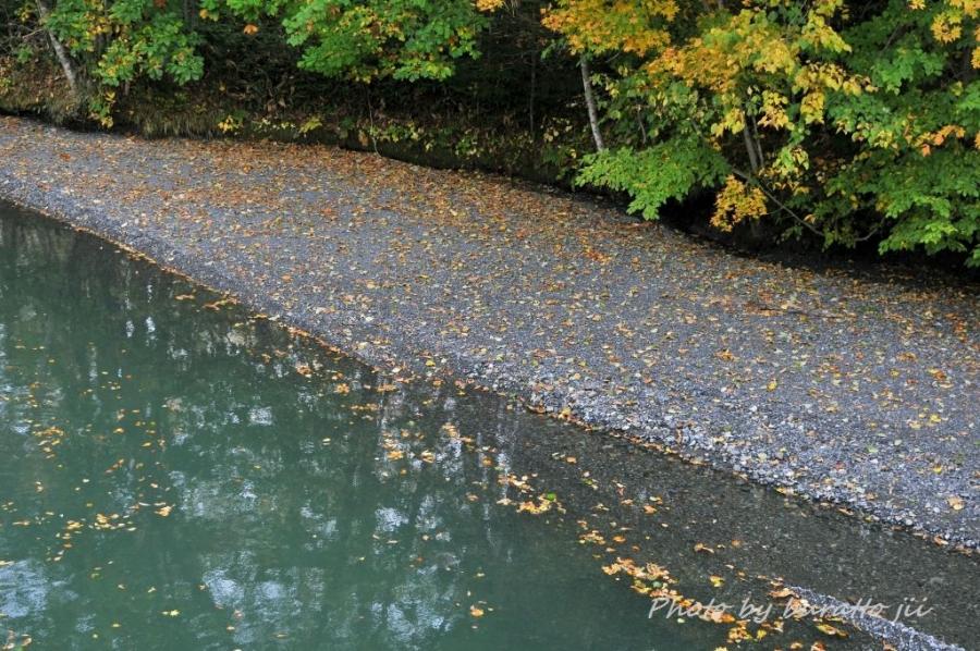 4HKD_新得町大雪橋から上岩松ダム湖の紅葉