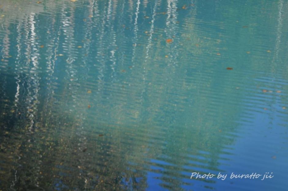 10HKD_白金の青い池