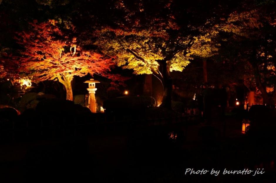 7.2013.11.16兼六園ライトアップKRE_1