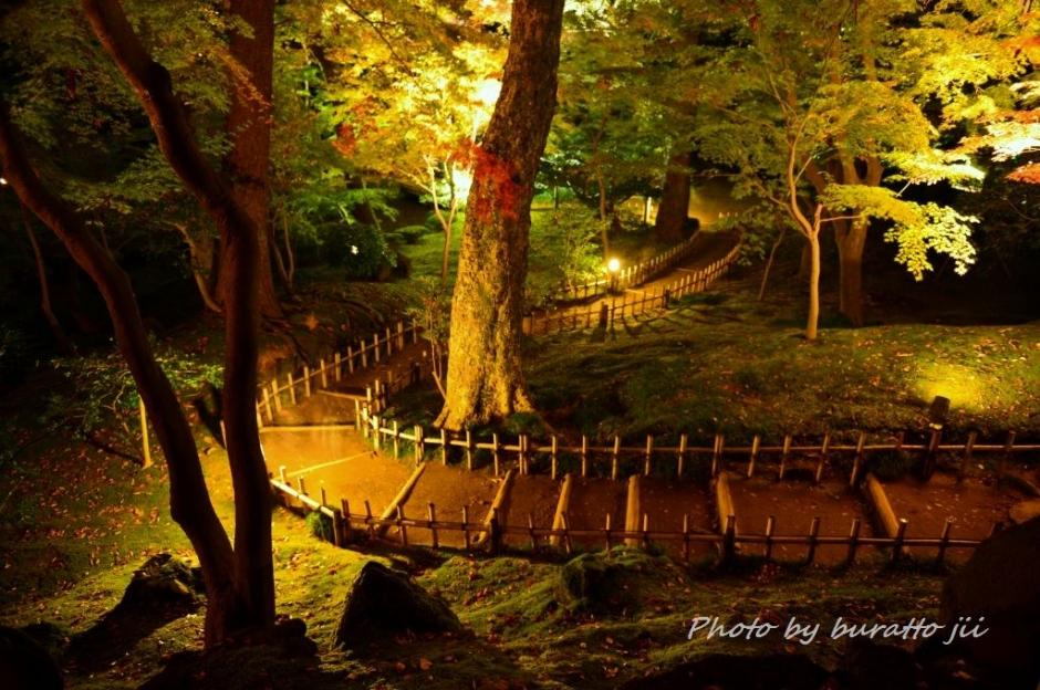 6.2013.11.16兼六園ライトアップKRE_1