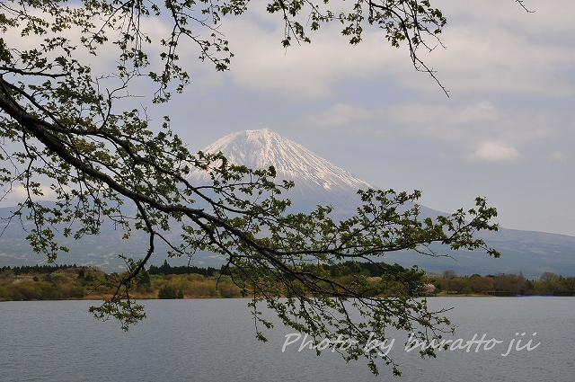 TAI_5879.jpg