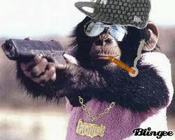 猿ガンEX