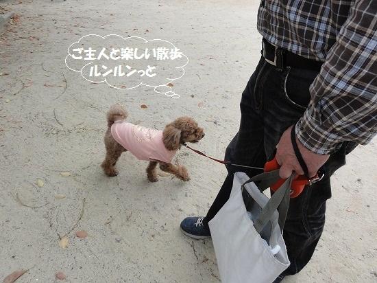 ご主人と楽しい散歩