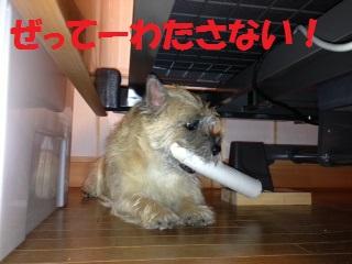 2013 10 1__5