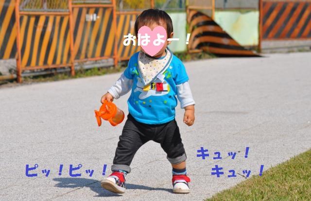 DSC_0070+(2)_convert_20131020094400.jpg