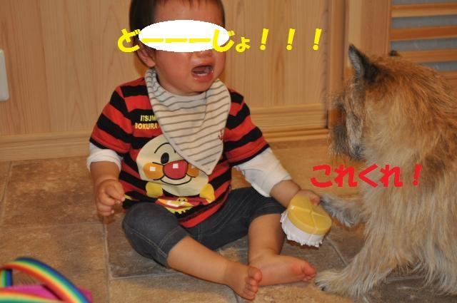 DSC_0088_convert_20130926232613.jpg