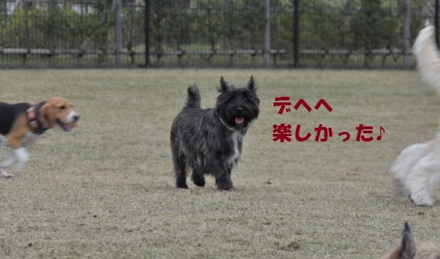 DSC_0633+(2)_convert_20131115230527.jpg