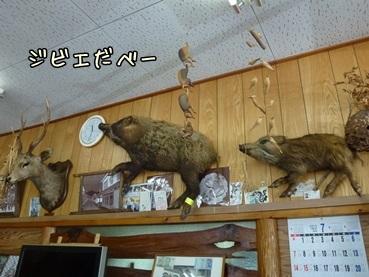 suzuka130714.jpg