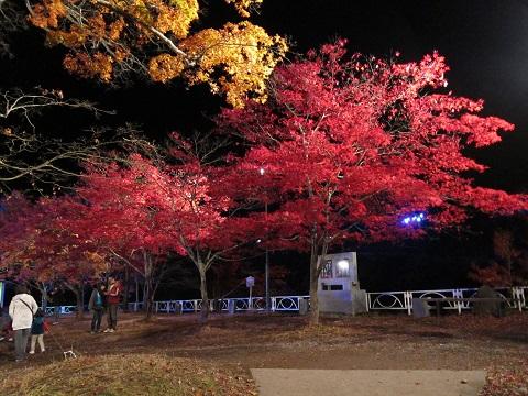 紅葉山IMG_3059