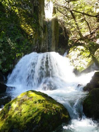 Wye Creek 8