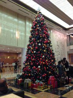 IMG_3519christmas.jpg