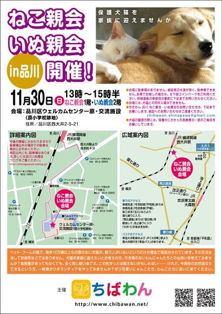 shinagawa50_postera.jpg