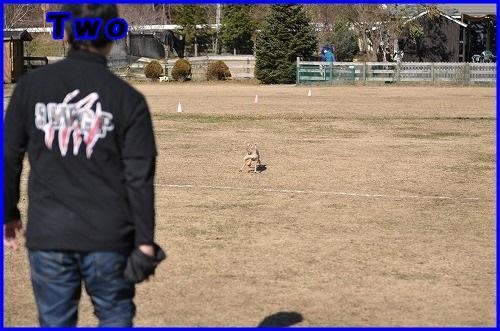 DSC_1614_20131205230632c47.jpg