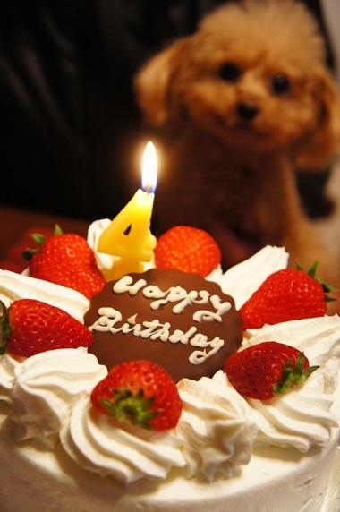 4のお誕生日ケーキ