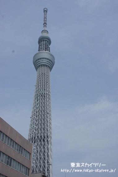 遠くからの東京スカイツリー