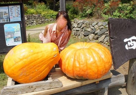 でっかいかぼちゃ