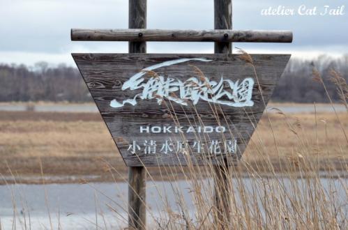 濤沸湖2013春15