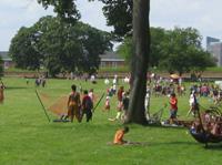 ハンモックがかかった広々とした緑の公園