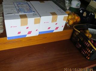 午後は2箱