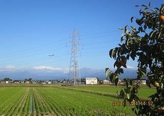 山と飛行機と柿