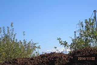 堆肥の山?