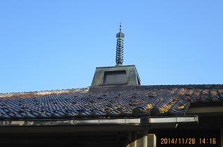 屋根の上も