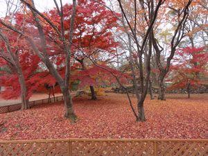 DSC09463懐古園