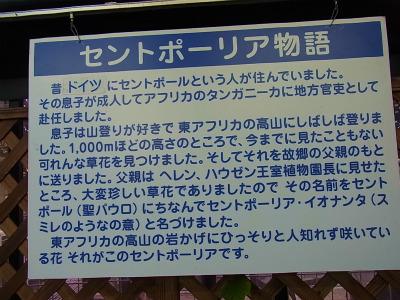 syukusyo-RIMG0221.jpg