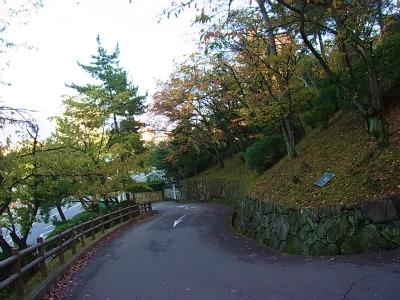 syukusyo-RIMG0223.jpg
