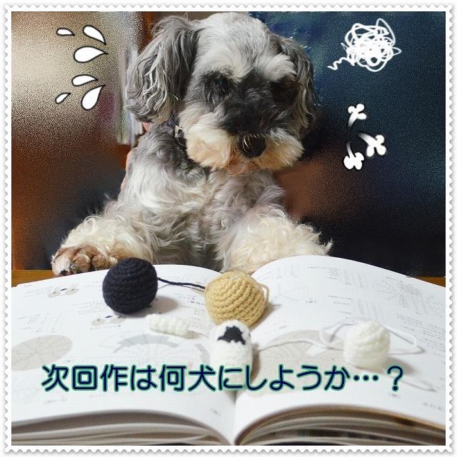 coconon_ここのん(のん編み犬1)