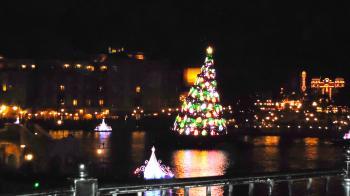 TDSクリスマスツリー