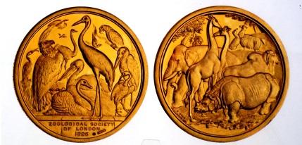 イギリス 金メダル 1826年 ロンドン動物園協会顕影メダル
