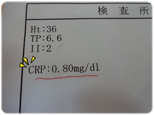 H261104 (1)