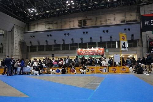 東京インター3