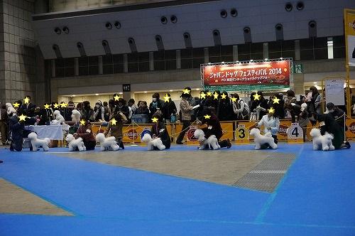 東京インター14